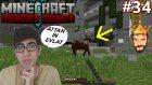 Türkçe Minecraft Hunger Games | Attan İn Evlat | Bölüm 34