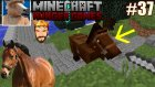 Ata Bindim!! | Minecraft Türkçe Hunger Games | Bölüm 37
