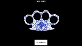 Steve Angello - Revolution (feat. David Garza)