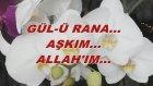 Gül-Ü Rana... Aşkım... Allah'ım...