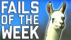 Fails Of The Week 1 August 2016 || Failarmy