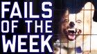 Fails Of The Week 2 August 2016 || Failarmy 2016