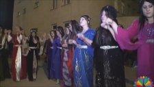 Harika Bir Kürt Düğünü - Hakkari Yeni