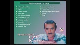 Cavit Karabey - Bacım