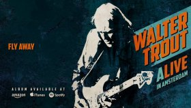 Walter Trout - Fly Away (ALIVE in Amsterdam)