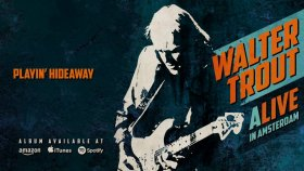 Walter Trout - Playin' Hideaway (ALIVE in Amsterdam)