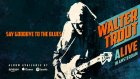 Walter Trout - Say Goodbye To The Blues (ALIVE in Amsterdam)
