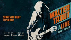 Walter Trout - Serves Me Right To Suffer (ALIVE in Amsterdam)