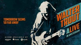 Walter Trout - Tomorrow Seems So Far Away (ALIVE in Amsterdam)