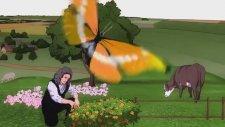 Matematik Hikayeleri - Isaac Newton