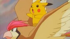 Pokemon 1. Sezon 19. Bölüm Türkçe Dublaj 480p HQ