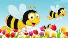 Arı Vız Vız Vız - En Güzel Cocuk Sarkısı