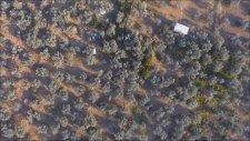 Küçükkuyu Özgür Plaj Drone Çekimi