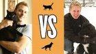 Kedi Sahibi İnsanın Hayatı vs Köpek Sahibi İnsanın Hayatı