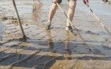 Elektirikle Balık Avı  Çin