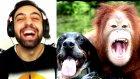 Gülmeme Challenge (Küfürlü) Tayfun Yılmaz | Mükemmel