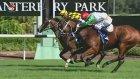 Yarış Sırasında Atların Performasını Yaptığı Hareketle Etkileyen Jokey