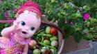 Baby Alive Maya Bahçede Sebze Meyve Topluyor