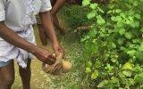 Hindu Dedemin Köyünde Bugün  Pilavüstü İşkembe Yahni