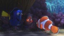Kayıp Balık Dori (Finding Dory) Özel Videolar - Morro Koyu Mücevheri, Kaliforniya