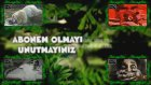 Türkiyenin En Tehlikeli 5 Mahallesi