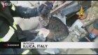 Depremden İki Hafta Sonra Kurtarılan Kediler