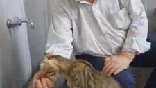 Susayan Kediye Şadırvanda Su İçiren Amca