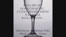 Alkolün Zararları (Hazırlayan: M. Mehtap Türk)