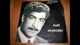 Halit Arapoğlu - Elveda Oy Oy - Nostalji Müzik