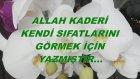 Allah Kaderi Kendi Sıfatlarını Görmek İçin Yazmıştır...