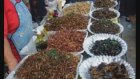 Çinliler Böcek Yiyorlar Tırtıl Çekirge Akrep Hamam Böceği Kırkayak Solucan