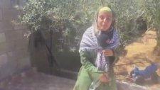 Filistinli Ranin'in Rap Şarkısı
