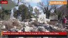 Koruma Altındaki 2 Dağ Keçisi Kaçak Avcıların Kurbanı Oldu