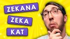 Zekana Zeka Katacak 13 İlginç Bilgi | Oha Diyorum