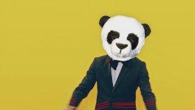 Gülben Ergen - Panda