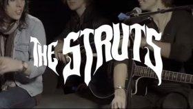 The Struts - Kiss This (Wild Honey Pie Session) - Yabancı Müzik