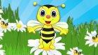 Arı Vız Vız Vız - 8 Farklı Arı Vız Vız Şarkısı Bir Arada - Afacan
