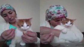 Çocuğunu Besler Gibi Kedisini Besleyen Kadın