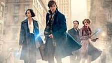 Fantastic Beasts and Where to Find Them - Fragman (2016)