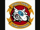 pitbull tuning öztürk elektronik