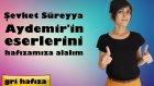 Şevket Süreyya Aydemir'in Eserlerini Hafızamıza Alalım
