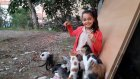 Vlog - Okul Dönüşü Annem İle Sokak Kedilerine Salam Alıp Yedirdik