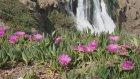 Antalya Kıyı Düden Şelalesi Ve Çiçekler 2015