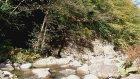 Ordu Doğa Karaoluk Köyü Dolapdere 2015 Sonbahar
