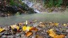Ordu Doğa Sonbahar Ve Yağmur Huzur