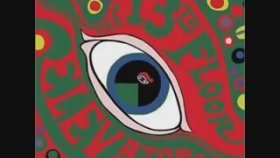 13th Floor Elevators - Roller Coaster