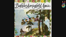 Buffalo Springfield - A Child's Claim To Fame