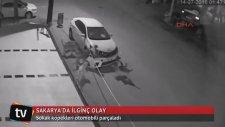 Sakaryada Arabayı Parçalayan Sokak Köpekleri