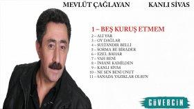 Mevlüt Çağlayan - Beş Kuruş Etmem - Popüler Türkçe Şarkılar