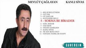 Mevlüt Çağlayan - Sorma Be Birader - Popüler Türkçe Şarkılar